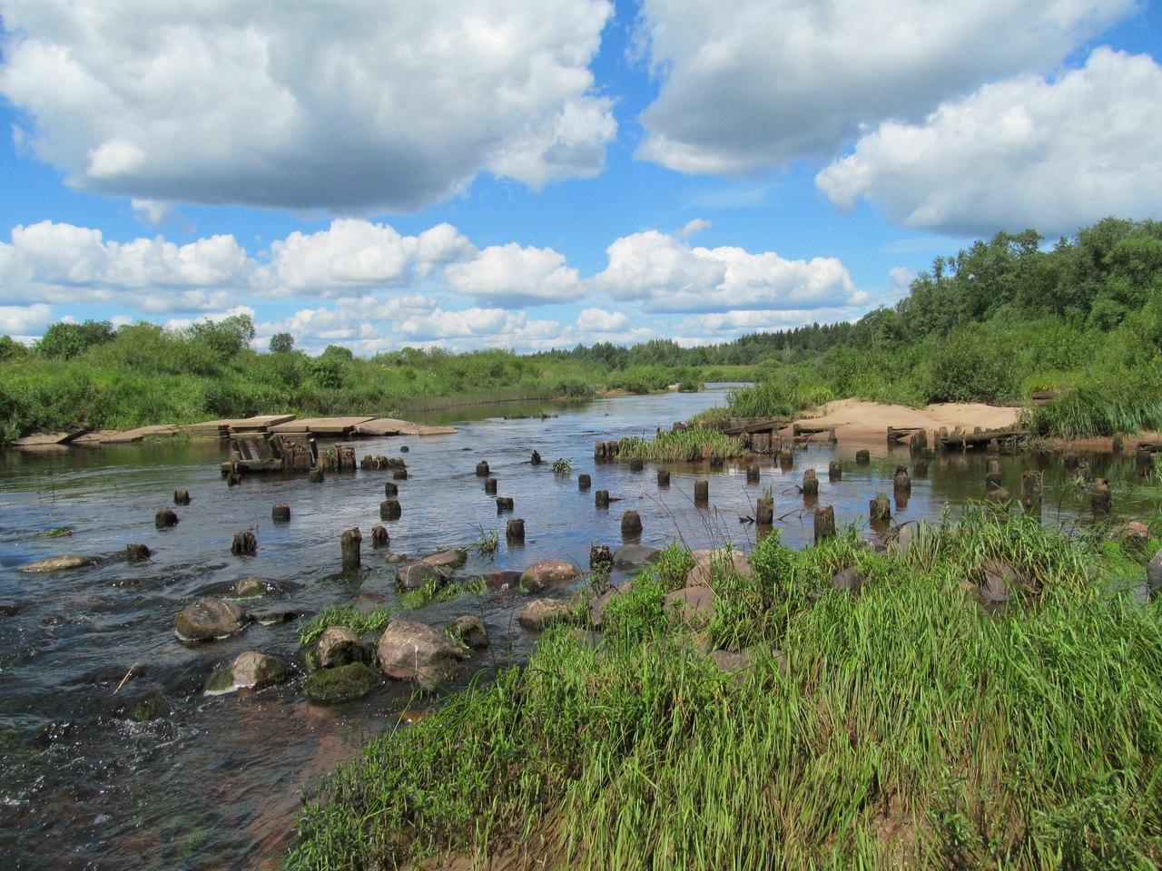 ряды деревянных свай ниже плотины