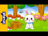 Little Peter Rabbit  Song for Kids by Little Fox