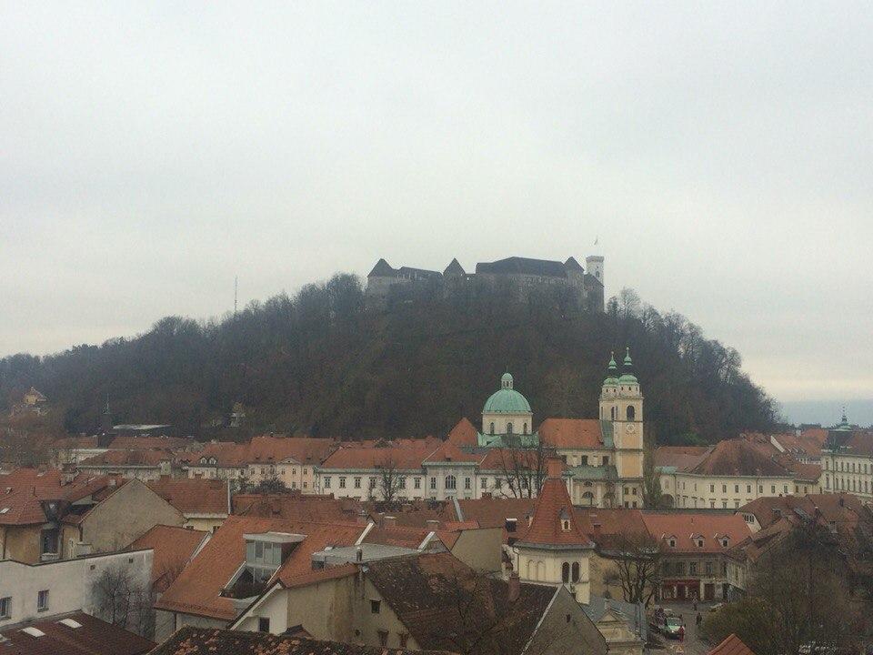 Командировка в Словению