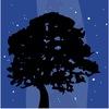 NIGHTSCAPE.RU - клуб любителей ночных пейзажей