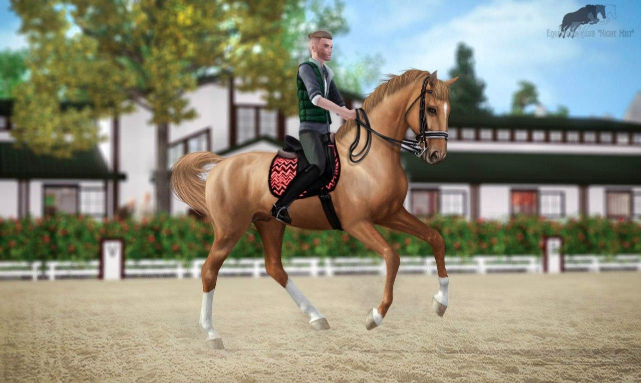 Регистрация лошадей в RHF 2 - Страница 37 LtITPLto5qI