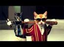 Cats Thug Life Compilation