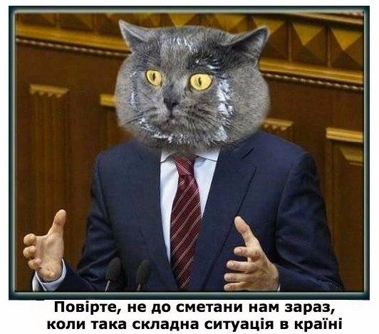 Кабмин пока не смог побороть коррупцию в Фискальной службе и таможне, - Яценюк - Цензор.НЕТ 6773