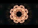216. Группа Винтаж и M.E.G.  N.E.R.A.K. - Я верю в любовь (Клип)   vk.com skromno  ♥ Skromno