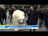 Realistic Polar Bear Puppet Walks Streets of London141