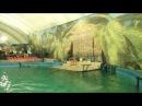 ДЕЛЬФИНАРИЙ В АСТРАХАНИ Выступление дельфинов