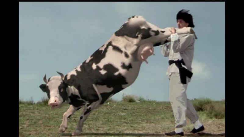 Корова мастер кунг фу