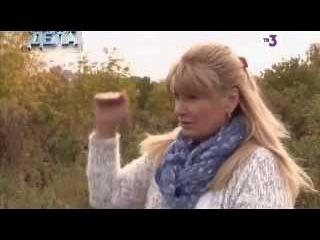 Х Версии  Громкие дела   3 й сезон   8 выпуск   Пермский Боинг   2015