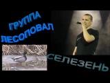 Гр. ЛЕСОПОВАЛ  - СЕЛЕЗЕНЬ