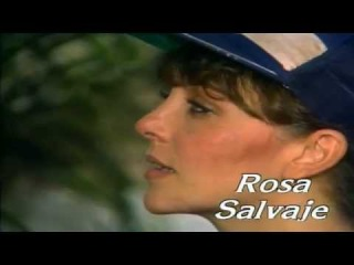 Дикая роза Rosa Salvaje HD