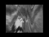 Zeitgeist Promo | Промо-ролик «Дух времени»