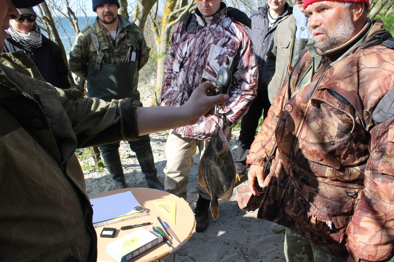 ловля калкана в калининграде