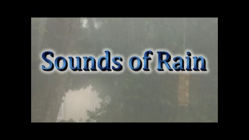 Rain 60min Texas Thunderstorm