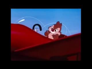 Смотреть мультфильмы диснея Чип и Дейл спешат на помощь все серии подряд Дональд Дак