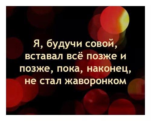 https://pp.vk.me/c633729/v633729990/b8c1/FQOudsiFLt0.jpg