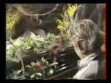 Gainsbourg &amp Screamin- Jay Hawkins
