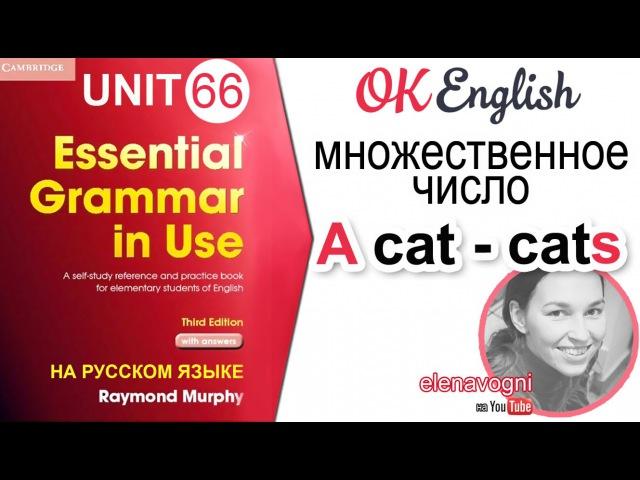 Unit 66 Множественное число в английском - PLURAL. Уроки английского для начинающих