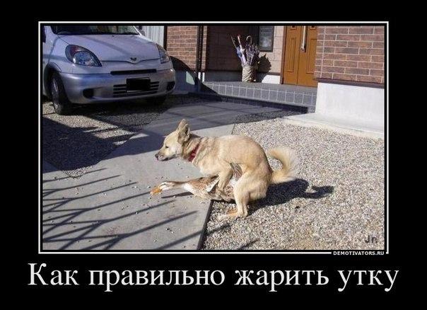 QZQ8gI A L0 - Муж уехал в командировку, а жена тем временем сошлась с соседом из смежной квартиры...