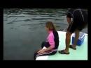 Дельфин насильник