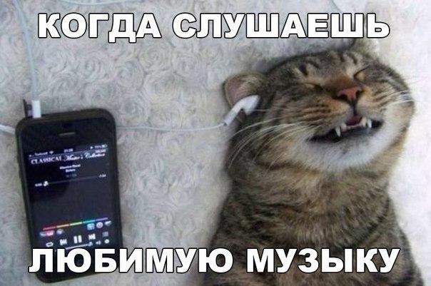 http://cs633731.vk.me/v633731684/258df/84HcO0qOBvY.jpg