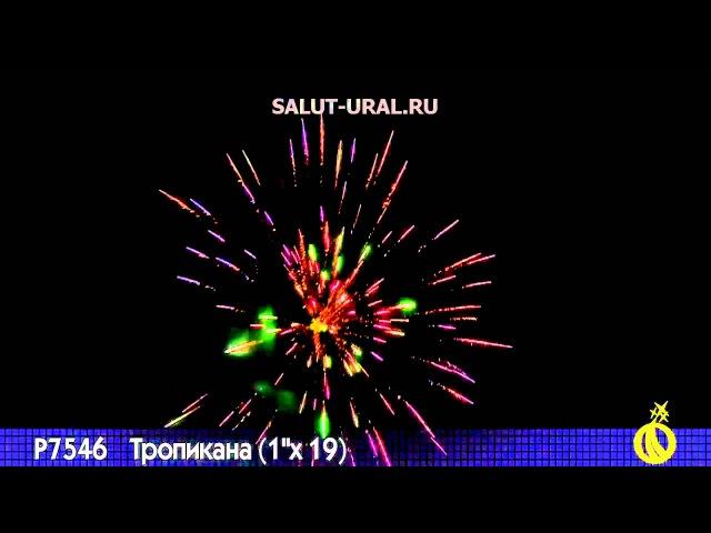 Р7546 Салют (1x19) Тропикана