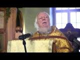 О. Дмитрий Смирнов. Проповедь о тупых и умных, самолётах и воробьях, о злых людях и Добром Боге.