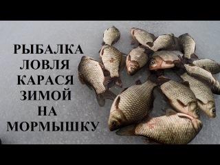 Рыбалка ловля карася зимой на мормышку