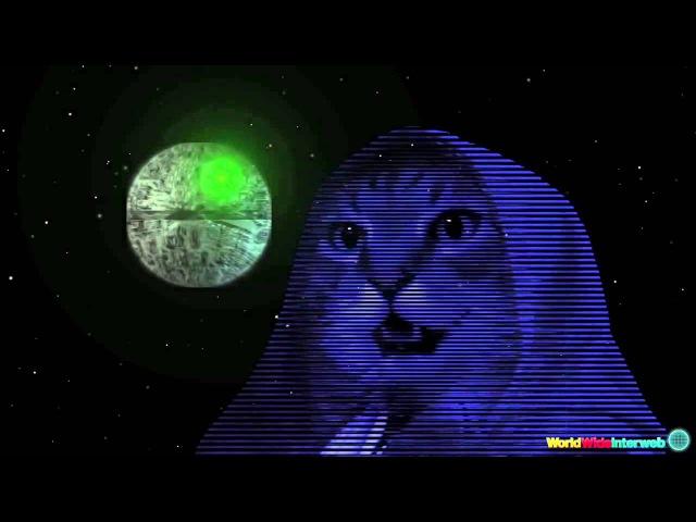 Мега кот поёт песню из Star Wars