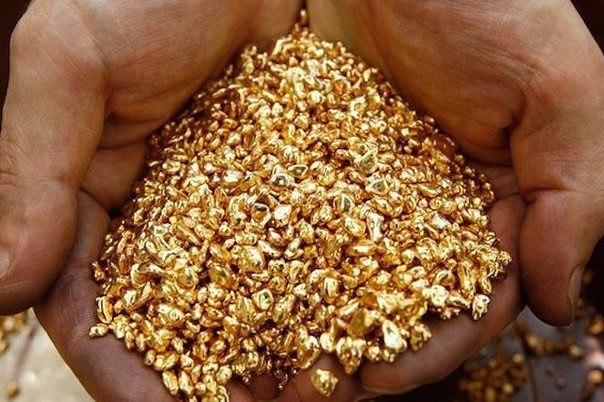 Золото — это настолько редкий металл, что за один час в мире находят больше желе...