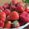 Едим и худеем - правильное питание для всех