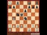 Шахматы  Ферзевый гамбит