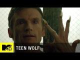 Волчонок (5 сезон) |