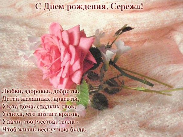 Поздравления с днем рождения другу сергея