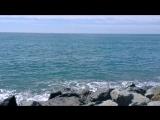 Море...Сочи...спокойствие...