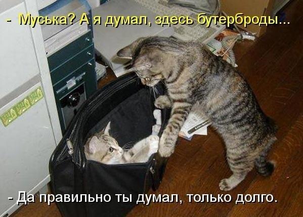 https://pp.vk.me/c633817/v633817981/1f85d/YEfR3QWnFE0.jpg