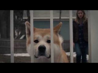 [HD] HACHIKO: A DOG'S STORY - 2009 - Chú Chó Trung Thành[Vietsub]
