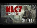 Прохождение NLC 7