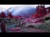 Richard Mosse - Infra - Jack Shainman Gallery, NY