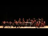 ПЕНЗАКОНЦЕРТ - Венский филармонический Штраус оркестр - Моцарт