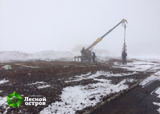 26 марта 2016. Готово свайное поле. Проведен прогрев. Приступаем к строительству ростверка.