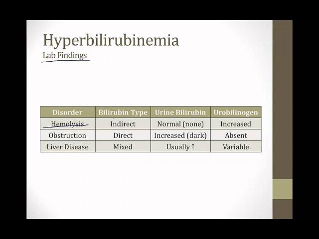 USMLE Step 1 Gastroenterology Bilirubin