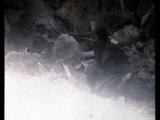 Валерий Меладзе - Вопреки (клип к кф Адмиралъ)