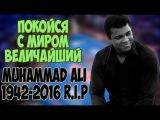 В ПАМЯТЬ О МОХАММЕДЕ АЛИ   R.I.P Muhammad Ali Highlights Tribute
