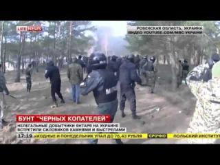 Янтарные войны на Украине: в ход пошло оружие