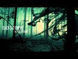 Black Sun Empire feat. Inne Eysermans - Killing the Light Official Black Sun Empire Channel