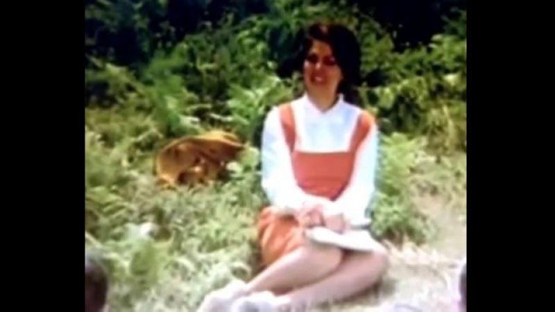 Bir Dağ Masalı 1967 yapımı Türkan soray filmi