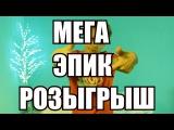МЕГА ЭПИК РОЗЫГРЫШ // ПЛЕЕР, ИГРОВАЯ МЫШЬ, ЧЕХЛЫ, СИГНЫ