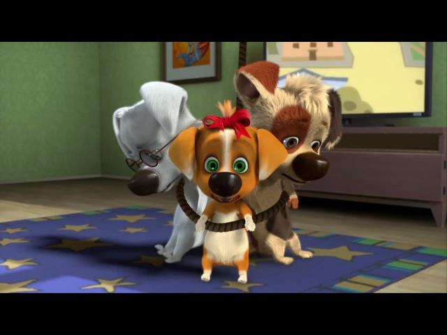 Белка и Стрелка: Озорная семейка 89 серия - Троянский пёс
