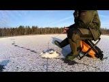 ловля ротана зимой