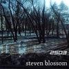 Steven Blossom